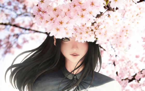 девушка, anime, лепестки, Сакура, анимации, cherry,