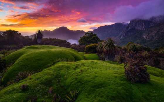 природа, яndex, коллекциях, летом, австралии, collections, коллекция, nicklaus,