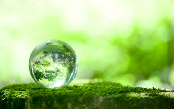 mengenal, ambiental, записи