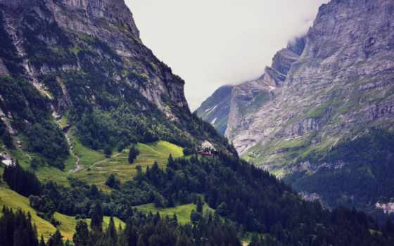 швейцария, swiss, горы, лес, природа, бесплатные, гора, пейзажи -,