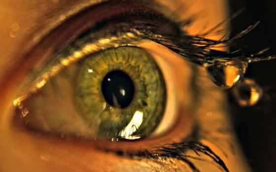 ultra, глаз, макро, ресницы, капли, часть, desktop,