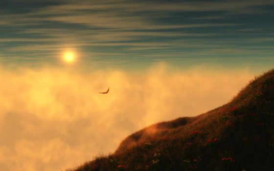 птица, небо, photoshop, полет, que, marss, calle, птиц, aullidos,