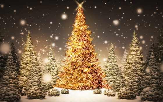christmas, krajobraz, świąteczny, tree, magic,