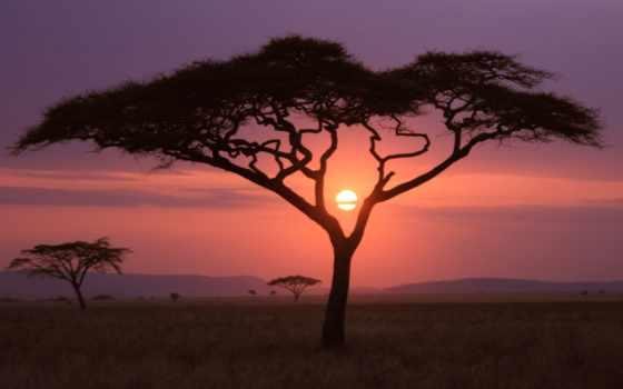 national, природа, geographic