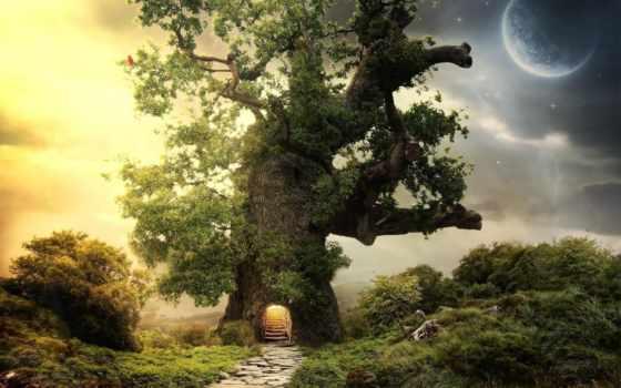 дуб, дерево, planet, дороги,