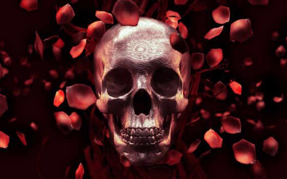 череп, роза, art, canvas, стена, petals, живопись,