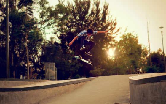 skateboard, trees, парень