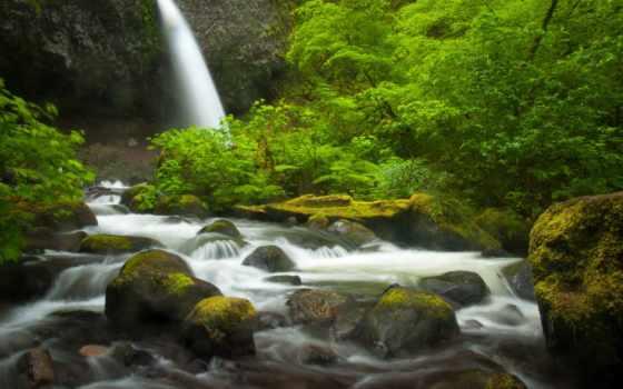 река, columbia, ущелье, oregon, free, falls, изображение, ponytail,