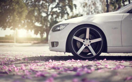 весна, авто, лепестки, автомобиля, макро, bmw, pro, передняя, автомобили, мар, подготовке,