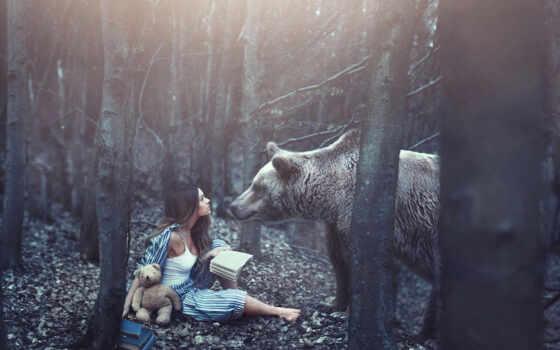 девушка, лес, книги, медведь, мишка, картинка, pinterest, книга, more, прочитать,