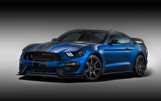 ford, shelby, mustang, car, muscle,