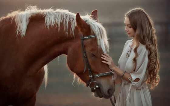 коллекция, фото, девушка, see, лошадь, card