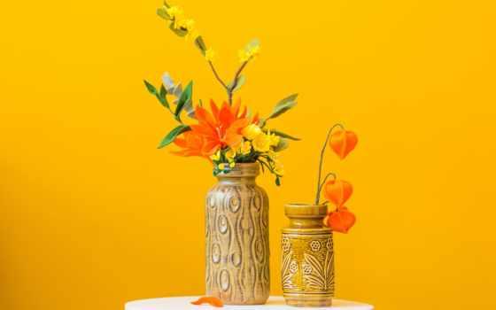 yellowflower, цветы, использование, indoors, нидерланды, комната, лицо, human