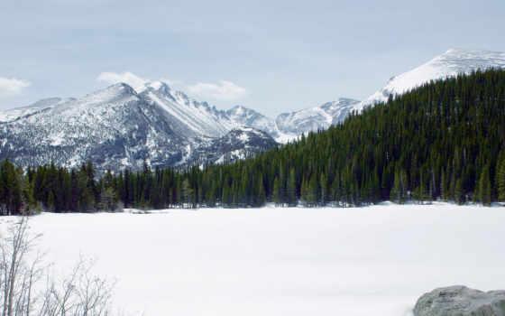 снег, лес
