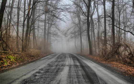дорога, зимняя, место