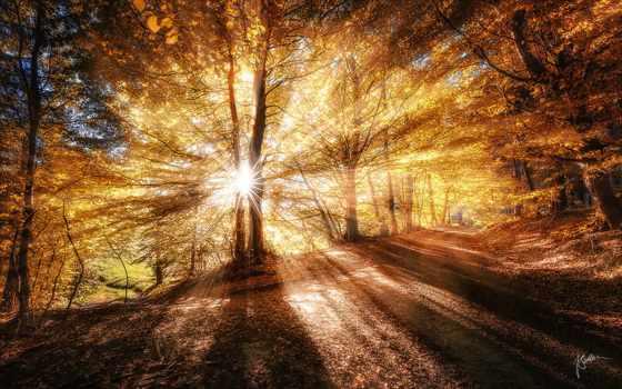 осень, скоро, création, deviantart, video, производственный, роликов, wout, oer, рекламных,