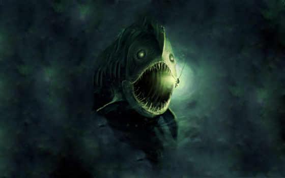 pisces, новости, опасные, рыб, fish, опасных, последние, мужчина,