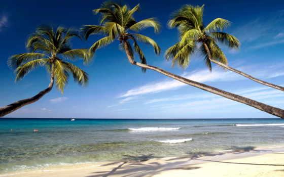 карибы, barbados, американский, пляж, северная, острова, без, виз, мандруй, дешевше, путешествия,