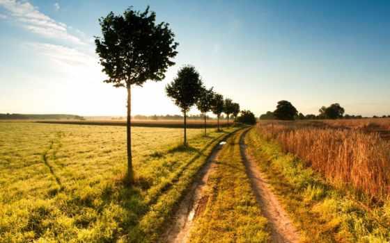природа, супер, путь, ферма, pics, images, cerrone,