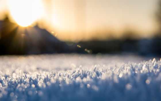 снег, макро, winter, природа, trees,