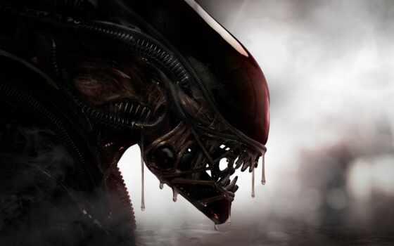 alien, хищник, против, сниматься