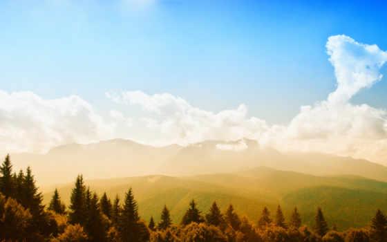 priroda, leto, пейзаж, les, деревя, зелень, горы,