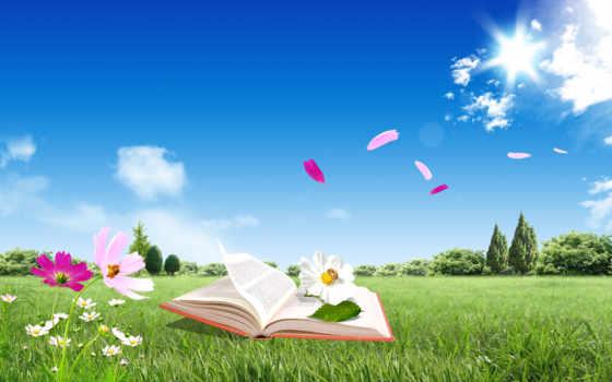 книга, цветы, красивые