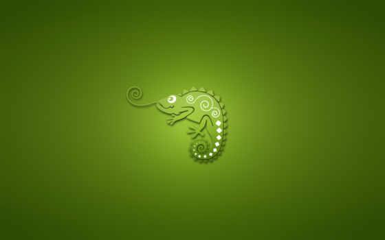 минимализм, chameleon, жанр, zhivotnye,