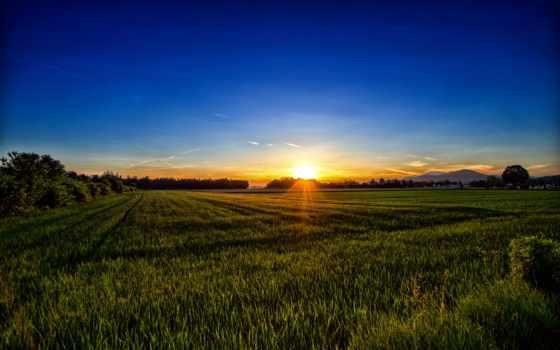 австрия, закат, трава, free, природа, carinthia, металл,