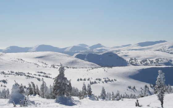 зима, обои, зимой, карпатах, снег, тем, драгобрат,