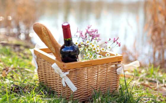 пикник, трава, природа, зелёный, вино