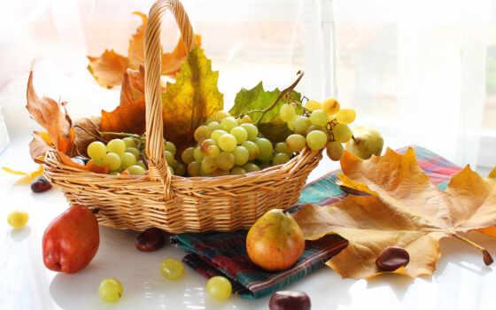 , fruits, food, grapes,