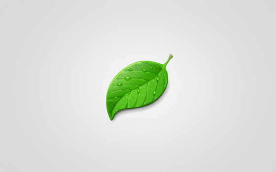 leaf, лист, зелёный, vishnu, vdr, рисунок, imgator,