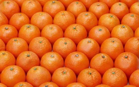 апельсины, оранжевый, картинка, фруктов, еда, ягод, фото, зооклубе, фрукты, zooclub, напитки,