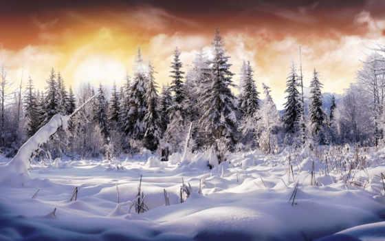снег, winter, education, вконтакте, со,