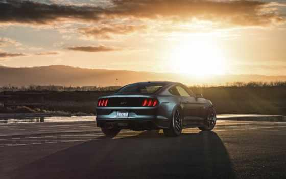 mustang, ford, car, телефон, desktop, mobile, планшетный,