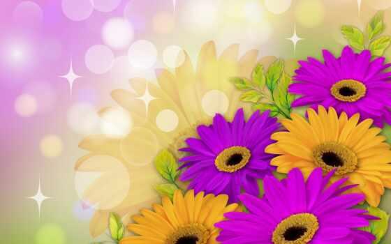 гербера, yellow, букет, цветы, daisy, фон