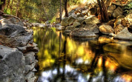 nature, stream