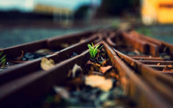 железная, дорога, рельсы Фон № 57638 разрешение 1920x1200