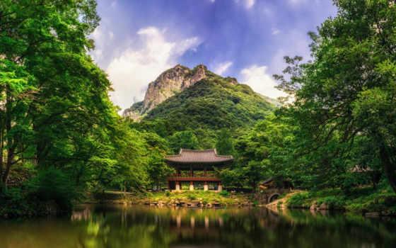 природа, красивые, графики, дизайна, вконтакте, qigong, gezondheid, voeding, китаянка, лес,