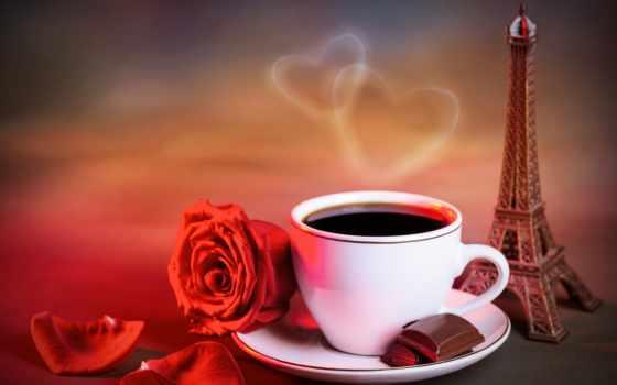 coffee, cup, париже, завтрак, широкоформатные, напитки, роза, париж,