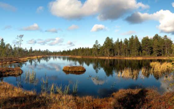 wood, озеро, landscape, трава, faded, осень, октябрь, остров, shadows,