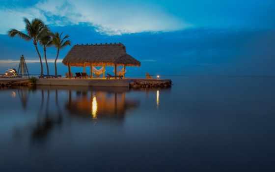 ocean, florida, пальмы, plage, fond, ecran, атлантический, вечер,