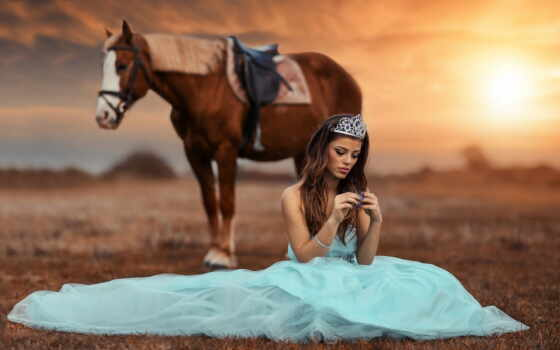loaded, уж, stallion, лошадь, best, sun