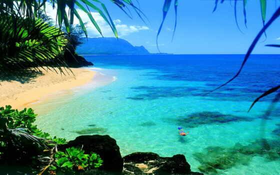 пляж, tropical, mural, vietnam, bay, там, стена, hawaiian, hike, yalong