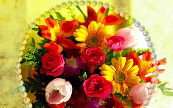flowers, цветы, world