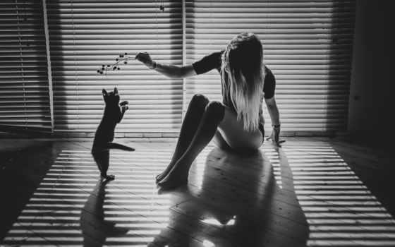 devushka, devushki, кошка