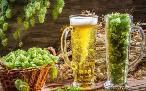 hop, пиво, очки