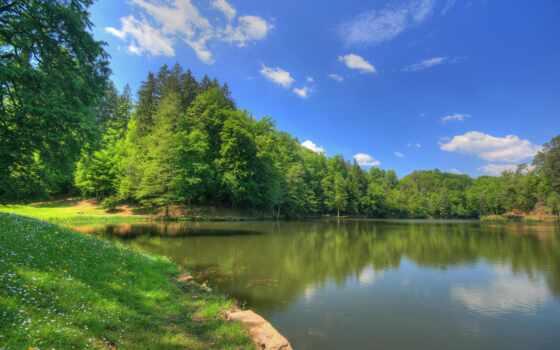 природа, россии, природы, озеро, лесное,