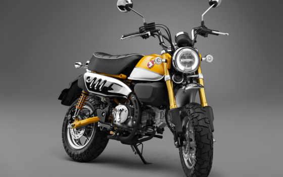 honda, обезьяна, bike, мотоциклы, concept,